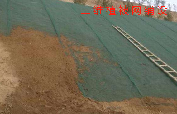植草施工中三维植被网的铺设工艺
